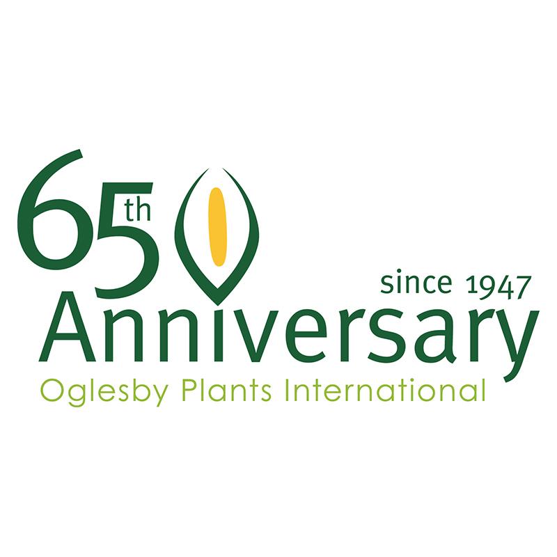 Oglesby 65 Anniversary logo