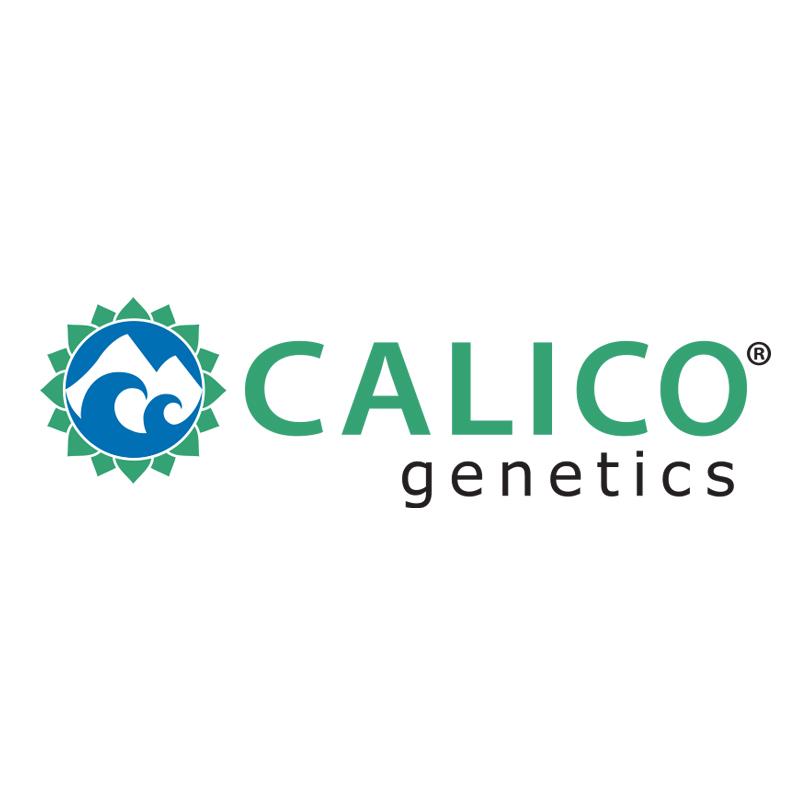 Calico Genetics logo